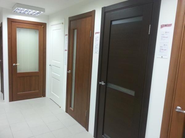стальные двери модерн дубна